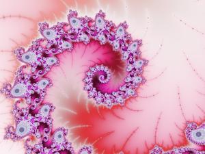 Whiskered Spiral