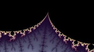 Pachyderm Nightlife